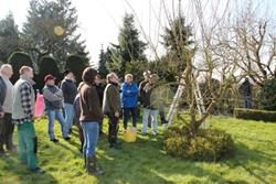 Click to view album: Workshop Obstbaumschnitt am 13. März 2016