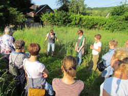 Click to view album: Workshop Kräuterapotheke mit Karin Laschet am 9. Juni 2016