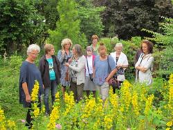 Click to view album: Besichtigung des Bio-Gartens Görg in Eynatten am 11. Juli 2016